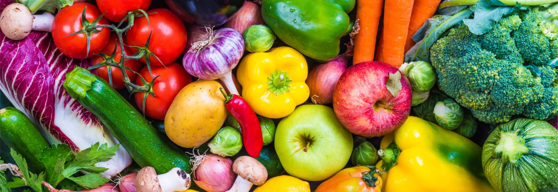 Ganzheitliche Ernährungsberatung, Diätcoaching, Ernährungsanamnese
